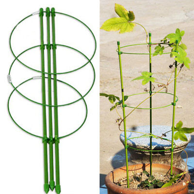 Pot Culture Plant Vine Climbing Rack Decorative Support Frame Flower Trellis