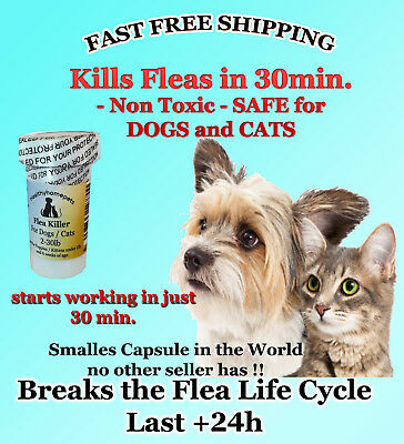 100 CAPSULES Flea Killer For CATS and DOGS 2-30 Lbs. 15 Mg FAST Quick Results !
