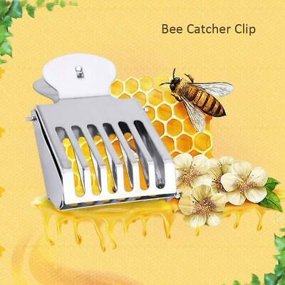 Type Beekeeping Tool Bee Cage Catching Catcher Equipment 5cmx4cm//1.97/'/'X1.57/'/'