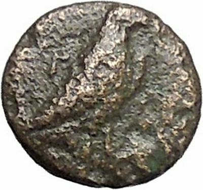 Kyme in Aeolis 350BC EAGLE & VASE on Authentic Ancient Greek Coin i48583