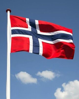 Norway Nacional Flag Polyester For House Boat Garden Festival Collection Room