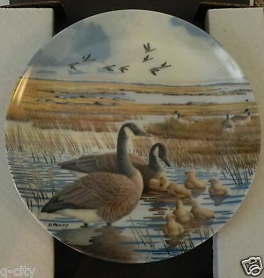 """The Family"" Canada goose 4th plate _ NIB _ Wings Upon the Wind by Pentz"