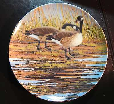 "NEVER ON DISPLAY ""Courtship"" Canada goose 3rd plate Wings Upon the Wind by Pentz"