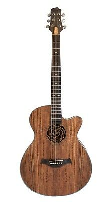 Acoustic Electric Guitar iMG845EQ 40 inch full size Nice Look