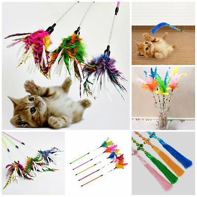 Pet Funny Cat Kitten Play Teaser Feather Interactive Stick Toy Wire Chaser Wand