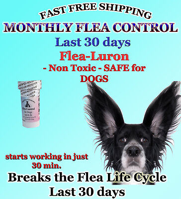 1 Year Supply MONTHLY Flea Control For DOGS 61-90Lbs.560 Mg 12 Capsules FAST S+H