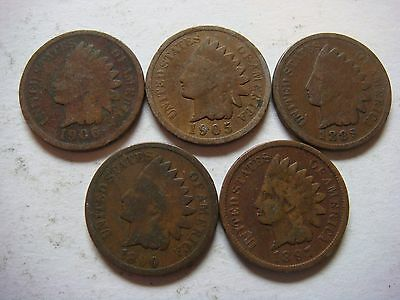 Lot of 5 Indian Head  U.S cent Coins nice old coins  #9634