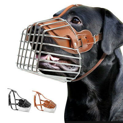 Strong Metal Dog Muzzle Adjustable Leather Collar Muzzle for Pitbull Boxer S-L