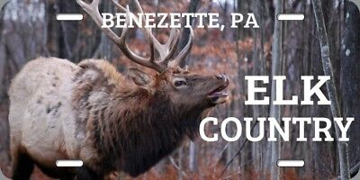 Elk Country License Plate Benezette Pennsylvania