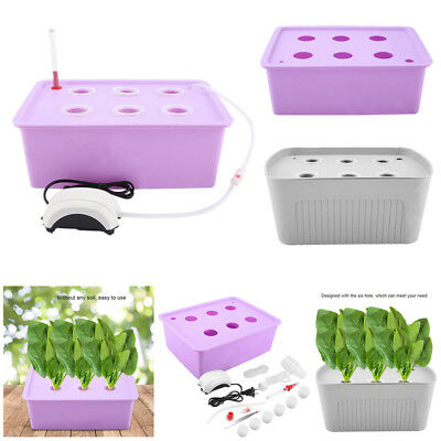 6 Holes Plant Site Hydroponic System Grow Bubble Tub Deep Water Culture Box