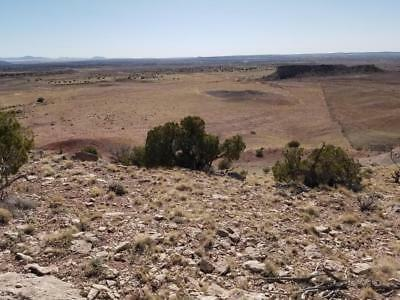 80 ACRES, $200/mo, NORTHERN AZ RANCH - 4mi E of SAINT JOHNS, AZ - FANTASTIC VIEW