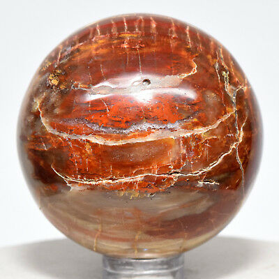 47mm Red Orange Petrified Wood Sphere Natural Fossil Agate Mineral - Madagascar