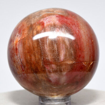 44mm Red Rose Petrified Wood Sphere Natural Fossilized Tree Mineral - Madagascar