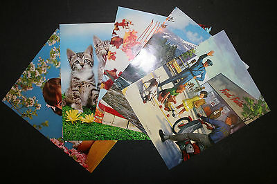 Lot of 5 Vintage Calendar Litho Prints Cats Kittens Dogs Fishing