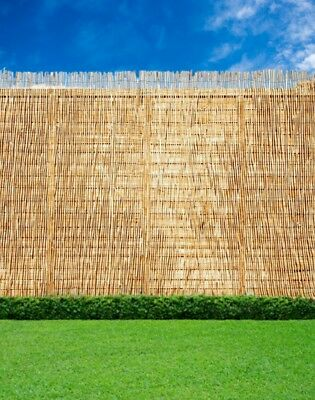 Abaseen Natural Reed Screening Garden Fence Peeled Roll Screen 1.8mx4m