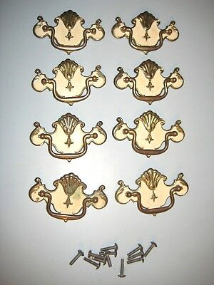 8 Chippendale DRAWER PULLS Brass Batwing Provincial White SHABBY RUSTIC COTTAGE