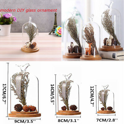 Glass Shade Cover Dried Flower Vase Terrarium Bottle Landscape Container Decor