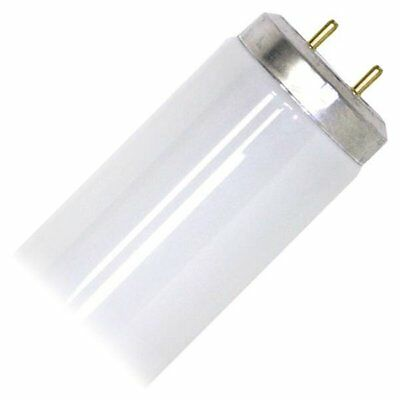 Westinghouse 05660 - F20T12/CW Straight T12 Fluorescent Tube Light Bulb