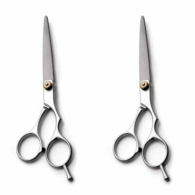 Professional Barber Hair Cutting/Thinning Stainless Steel Scissors Tool New EA