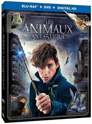 Blu Ray + DVD : Les animaux fantastiques - NEUF