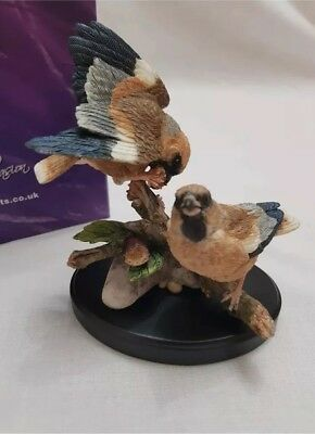 Country Artists Broadway Birds- Hawfinch Pair With Damson Figurine