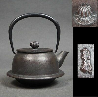 Japanese Nanbu Tekki Iron Teapot Kyusu Tetsubin Antique Tea Ceremony  #1003T