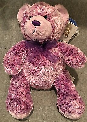 "Build A Bear Nikki's Ii Purple Teddy 15"" Cancer Diabetes Plush Stuffed Doll Nwt"