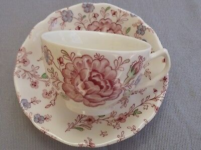 Superbe Tasse A The Roses Chintz Johnson Bros