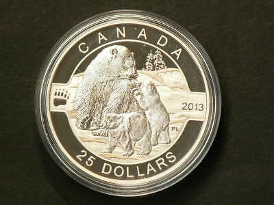 2013 Canada $20 Polar Bear Family With CoA Fine Silver No Tax #G435