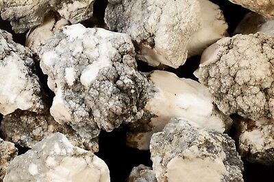 """Howlite 2"""" 1 CENT NO RESERVE Rock Mineral Natural Healing Crystal Reiki Stone"""