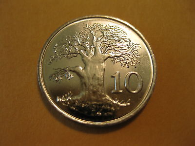 1999 Zimbabwe Coin  AFRICA BAOBAB TREE 10 cents  super nice coin