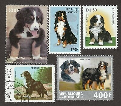 BERNESE MOUNTAIN DOG ** Int'l Dog Postage Stamp Collection ** Unique Gift Idea**