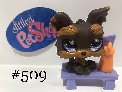 Littlest Pet Shop Yorkies With Glass Eyes Rare 509 883 And 1611