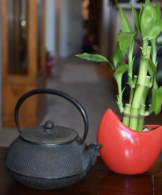 Japanese Cast Iron Teapot Antique Signed in Japanese Iwachu Made in Japan