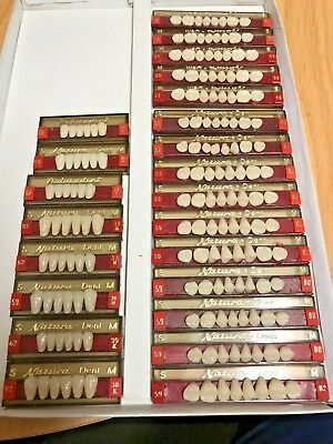 Natura Dent Upper Posterior/Lower Interior Porcelain Dental Teeth 21 Cards Total