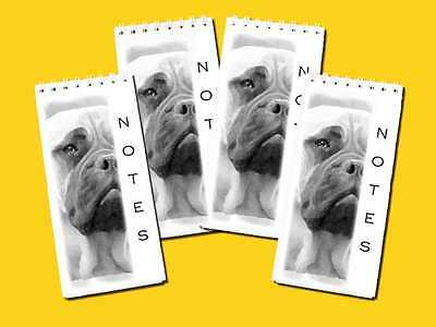 Bullmastiff Dog Small Slim pocket Note Pads Jotter pads pack of 4, Gift Set