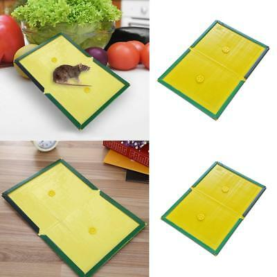 Super Strong Sticky Mice Traps Mouse Glue Boards Rat Glue Pads Mouse Catcher
