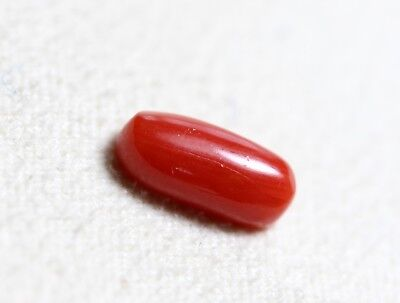 2.40 Ct 100% Natural Coral Loose Italy No Heat Column Shape Red Color Gemstone