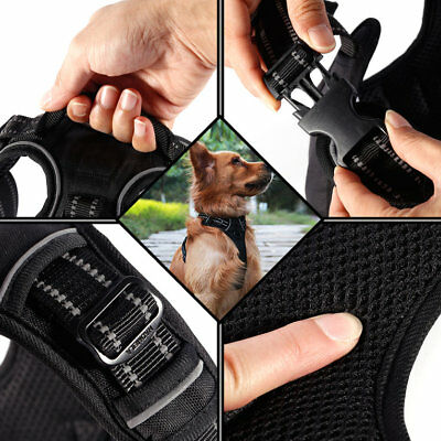 Durable No-Pull Dog Harness 3 Meters Reflective Outdoor Adventure Pet VeR0