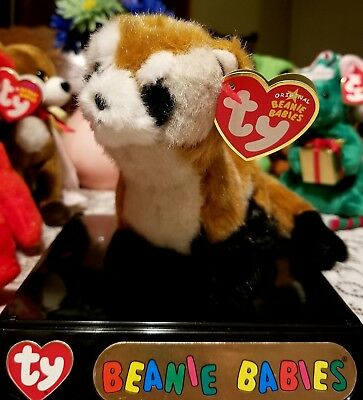 1054b06ad34 TY BEANIE BABY - SHILOH the Black Footed Ferret (Internet Excl) (5.5 ...