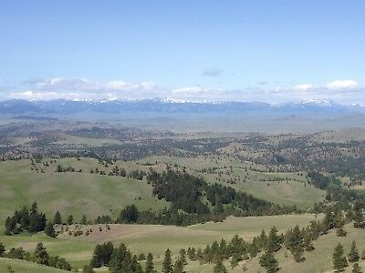 12.57 Acres Craig Montana Mountain Property Upper Saw Creek Area