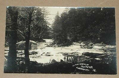 ***vintage 1945 Adirondack Forest Rppc***beach's Real Photograph