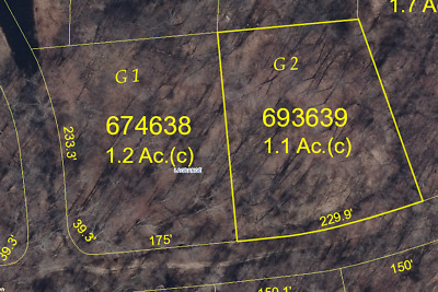 1.1 Acre Land in NY Assessed Valued at $76,600 FOR SALE!!! NO RESERVE AUCTION