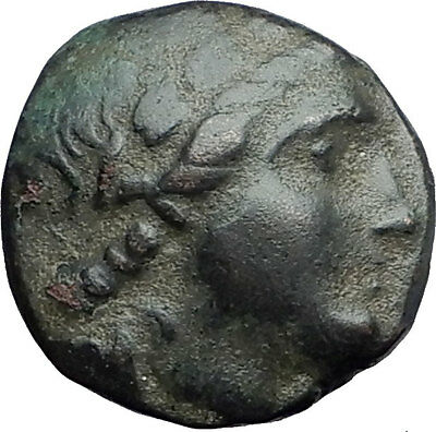ANTIOCHOS II Theos 261BC Seleukid Tripod Authentic Ancient Greek Coin i59788