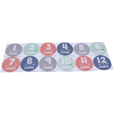 Baby Pregnant Women Monthly Photograph Stickers Month 1-12 Milestone Props G