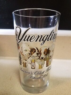Yuengling Beer Pint Glass Dogs Nice