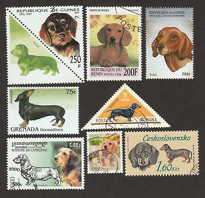 DACHSHUND **Int'l Dog Postage Stamp Collection  ** Great Gift Idea **