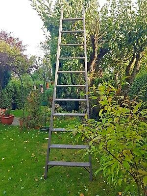 Large antique wooden orchard ladder