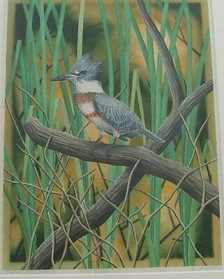 The King Fisher Life Size Original Watercolor Signed by Artist Costin