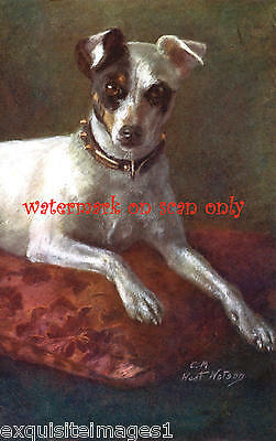 Vintage Art~Maud West Watson~Smooth Coated Fox Terrier Dog~ NEW Note Cards
